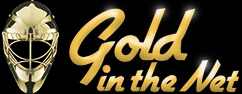 Gold in the net logo